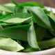 curry-leaves-wefornewshindi