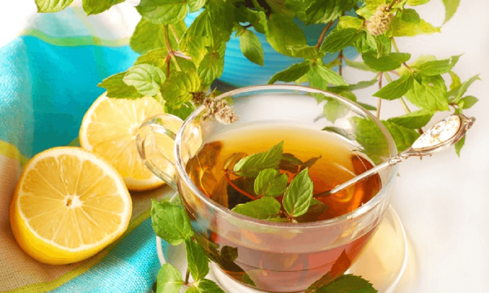 fresh-mint-tea-wefornewshindi