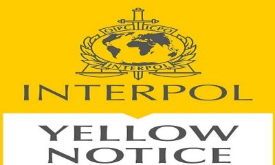 Yellow Notice