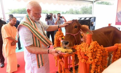 livestock production Narendra Modi with Cow